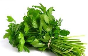 Петрушка - польза организму и украшение блюда