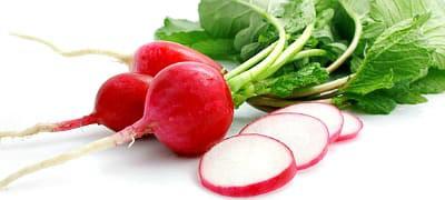 Редис для весеннего салата